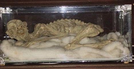 Momia Kappa Matsuura