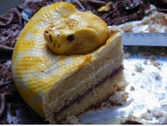 Piton Serpiente Pastel (4)