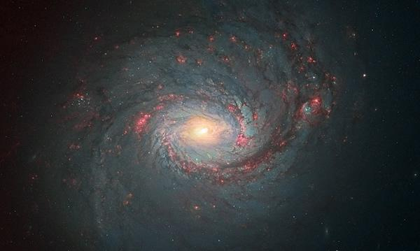 Hubble's hidden treasures (20)