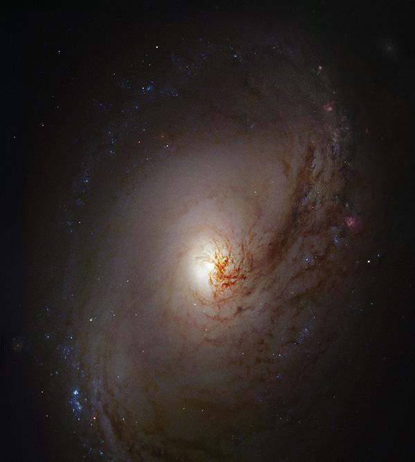 Hubble's hidden treasures (1)