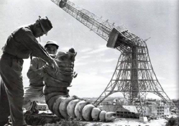 Godzilla 1954 (11)