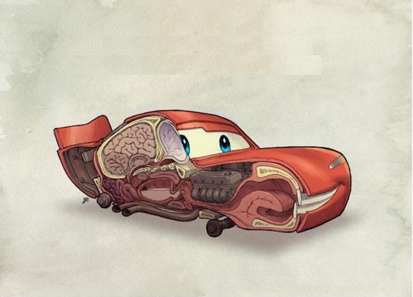 Anatomia Rayo McQuee