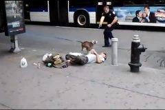 Policia dispara a perro en Nueva York