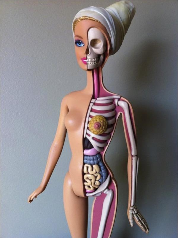 Anatomía de una Barbie (5)