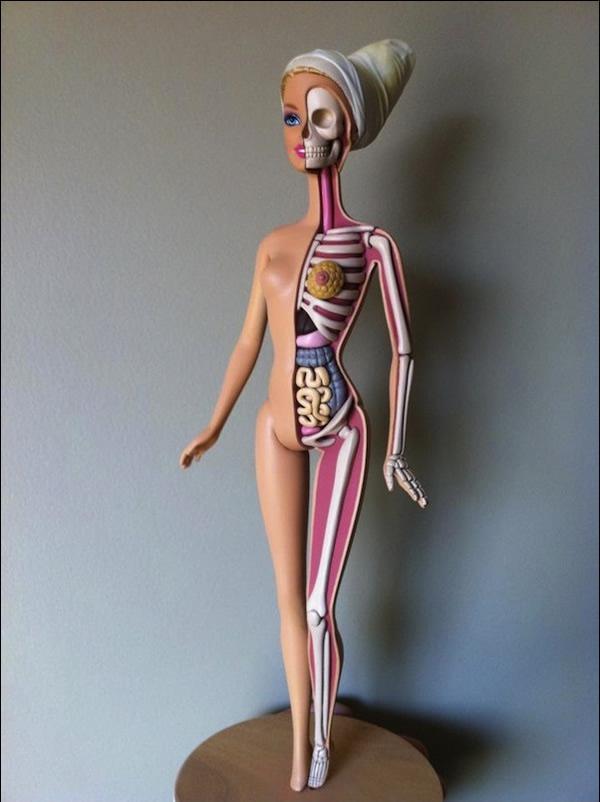 Anatomía de una Barbie (4)