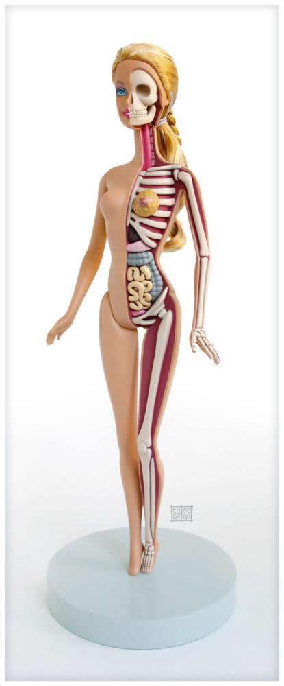 Anatomía de una Barbie (1)