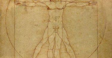 datos curiosos del cuerpo humano
