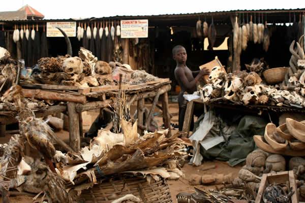 Lomé, Togo tienda vudu