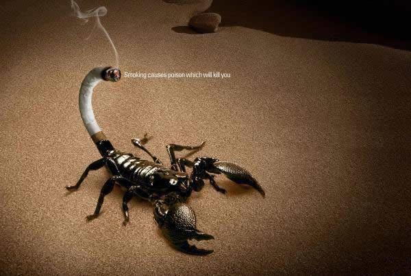 Anuncios publicitarios antitabaco (7)