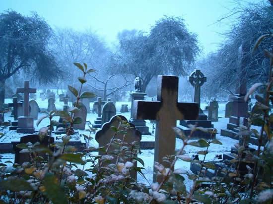Cementerio Muerte