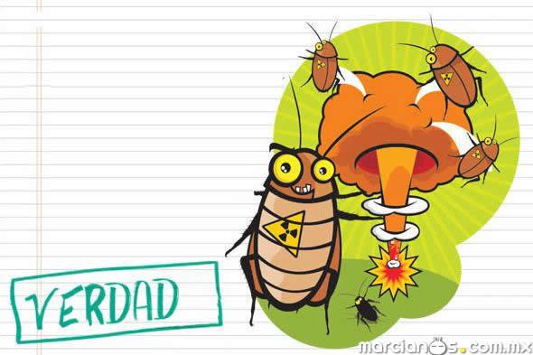 cucarachas guerra nuclear