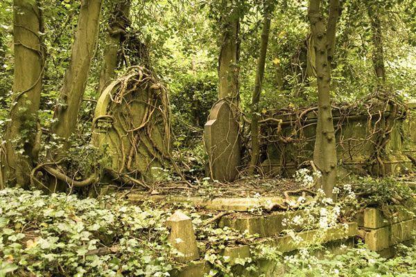 cementerio de Highgate (25)