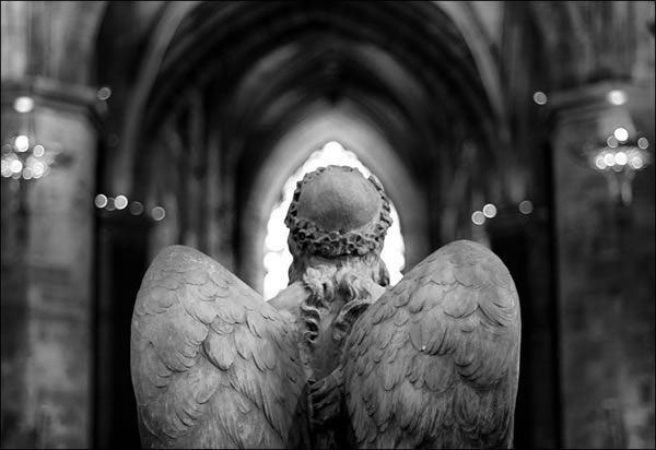 angeles