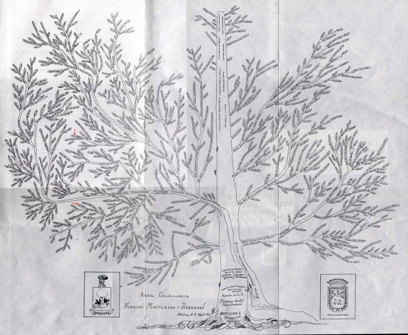 arbol genealogico moctezuma