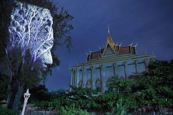 Cambodian Trees by Clemente Briend (3)