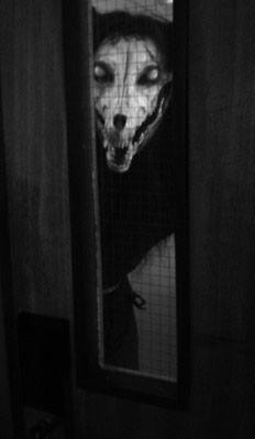 Imágenes aterradoras 2012 (21)