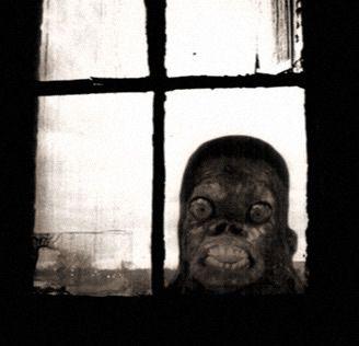 Imágenes aterradoras 2012 (20)