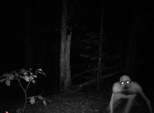 Imágenes aterradoras 2012 (19)