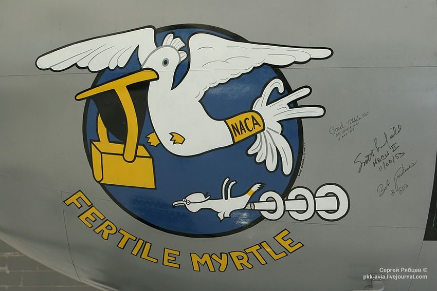 Nose Art paintings Fuerza Aérea (35)