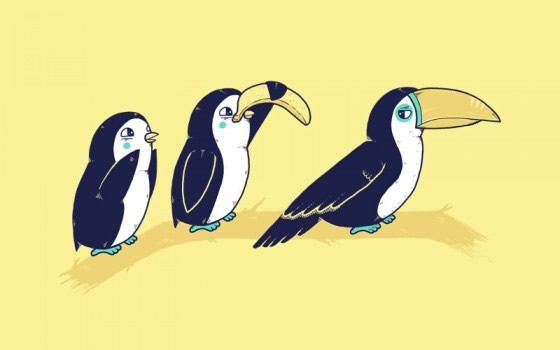 Randy Otter ilustracion (2)