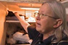 mujer 100 gatos