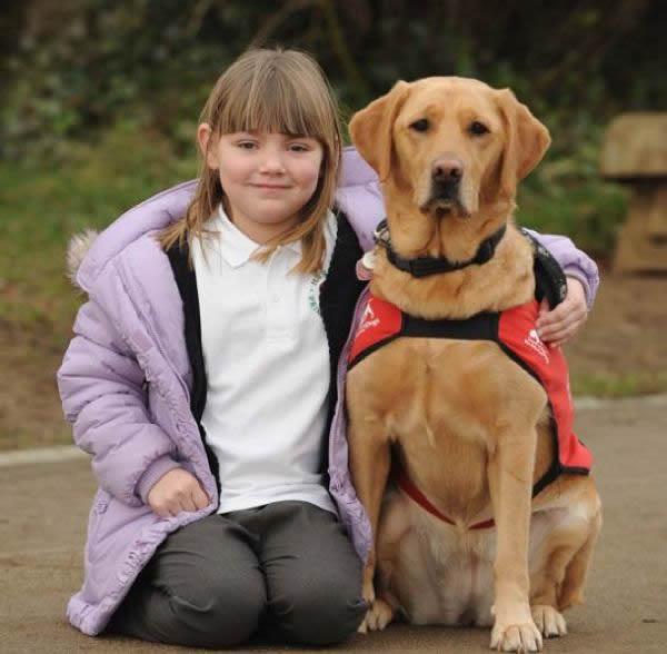 perro entrenado para older detectar (1)
