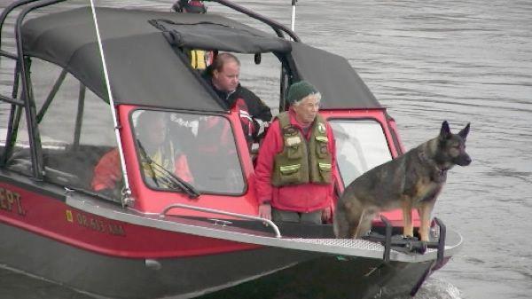 perro entrenado para older detectar (4)