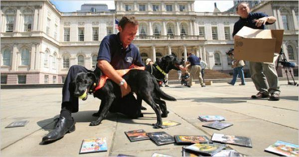 perro entrenado para older detectar (3)