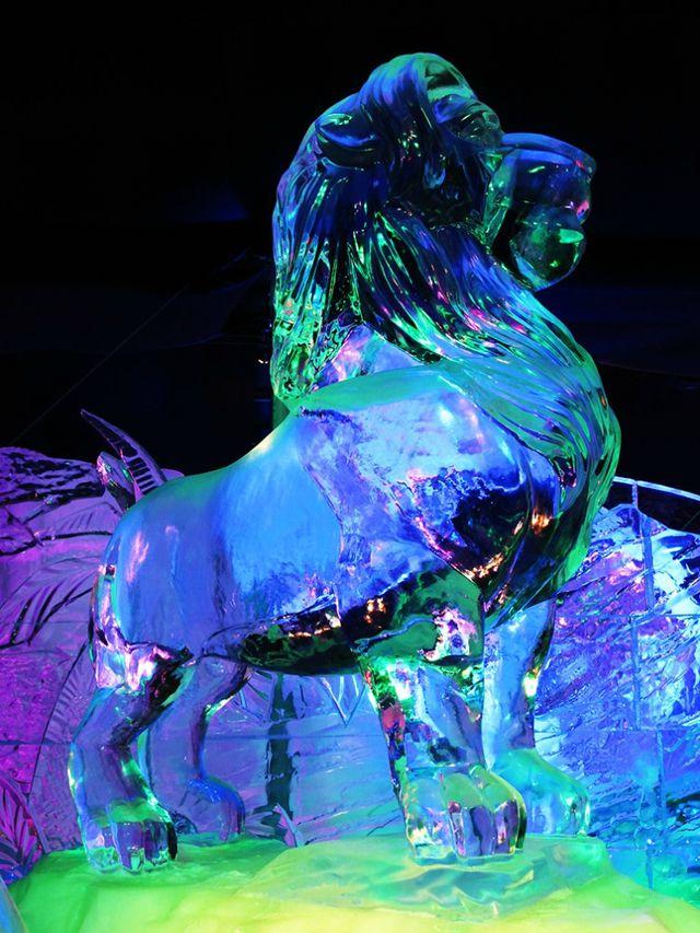 escultura hielo (9)