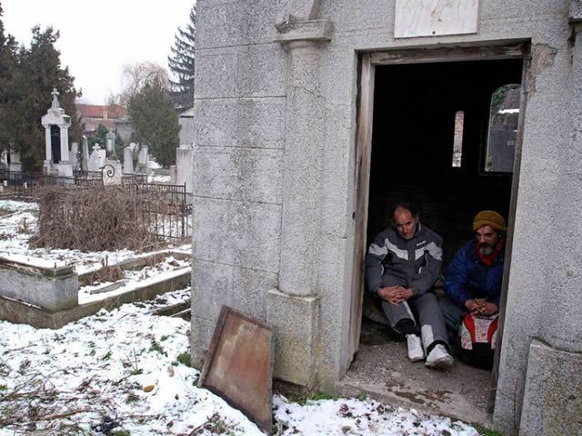 vagabundo cementario (5)