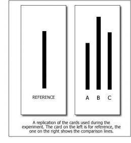 5 Experimentos psicológicos que muestran nuestro lado oscuro Asch-experiment