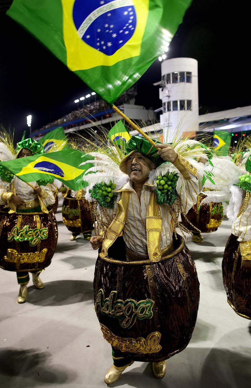 Carnaval de Rio 2013 fotos (20)