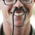 Cobra Gold 2013 – Militares sobreviven con sangre de cobra en la selva tailandesa