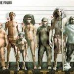 10 mayores misterios de la evolución humana