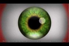 Ilusión óptica alucinógena