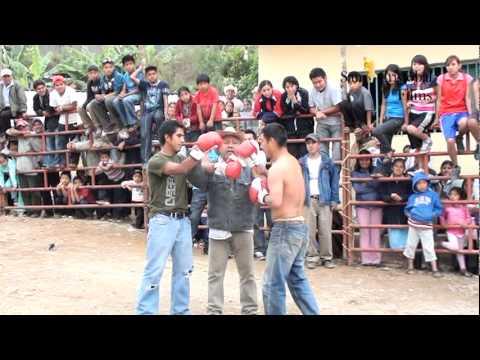 box amateur oaxaca