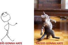 gatos rage comics (18)