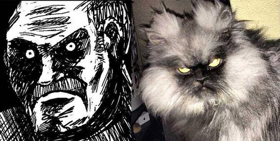gatos rage comics (16)