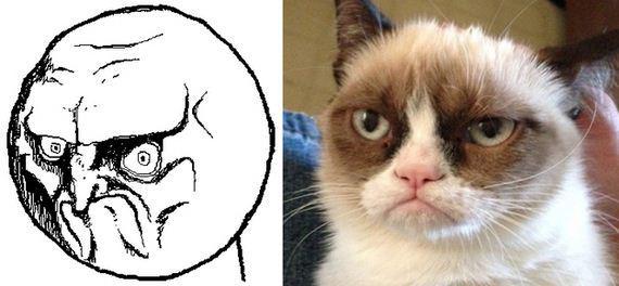 gatos rage comics (12)
