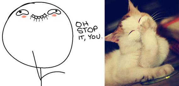 gatos rage comics (8)