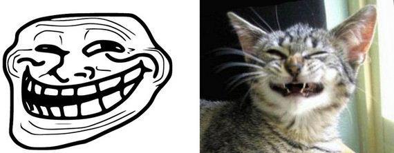gatos rage comics (5)