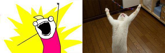gatos rage comics (1)
