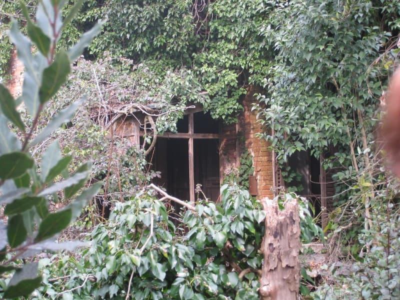 Poveglia Hispital Psiquiatrico Abandonado (2)