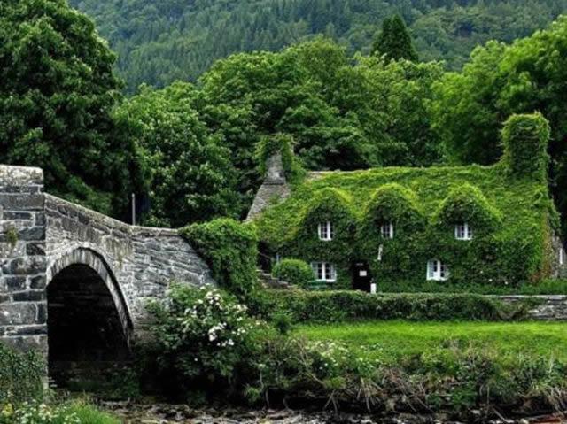 casas más raras y sorprendentes (9)