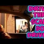 Chucky en un McDrive