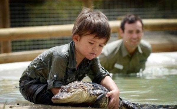 Charlie Parker niño cocodrilos (3)