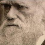 Darwin explica los porqués