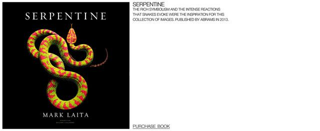 fotos serpientes - Serpentine Mark Laita (5)