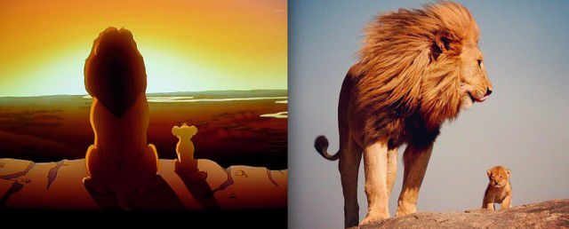 Animales Disney vida real (10)