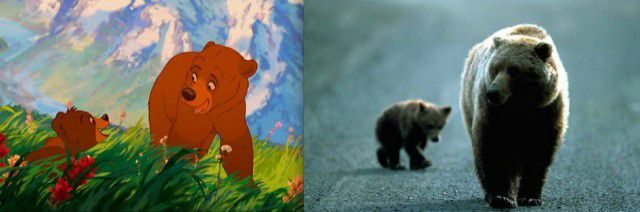 Animales Disney vida real (7)